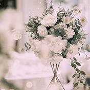 蒲城县婚礼策划方案:白玫瑰