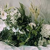 蒲城县婚礼策划方案:绿植