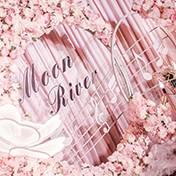巴彦淖尔乌拉特前旗婚礼策划方案:音符