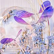 蚌埠婚礼策划方案:炫彩竹蜻蜓
