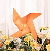 长沙婚礼策划方案:小风车
