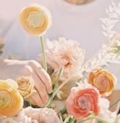 新宁县婚礼策划方案:浪漫花园