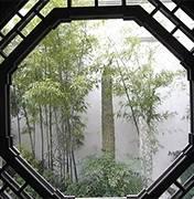 东莞市婚礼策划方案:沉浸式场景体验